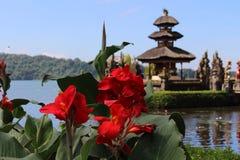 Lopp Bali Royaltyfria Bilder
