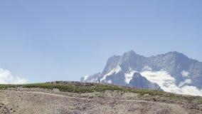 Lopp i bergen Royaltyfri Fotografi
