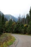 2 Lopp i bergen Royaltyfri Bild