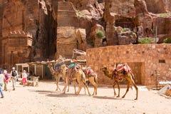 Lopp i Jordanien Royaltyfria Bilder
