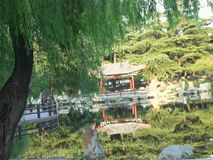 Lopp i Kina, tempeltr?dg?rd royaltyfria bilder