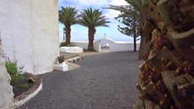 Lopp i Lanzarote stock video