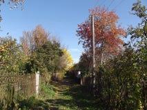 Lopp till och med gamla trädgårdar i sen höst Arkivfoto