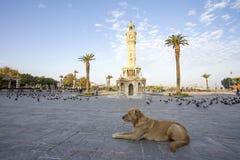 Loppbegreppsfoto; Turkiet/Izmir/Konak/historiskt gammalt klockatorn/Konak fyrkant arkivbild
