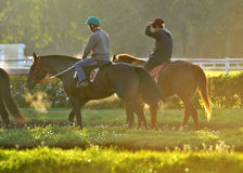 Lopphästar och ryttarna tidigt på morgonen på en kapplöpningsbana Fotografering för Bildbyråer