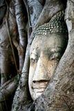 LopphistorieBuddha som är forntida i Thailand arkivbilder