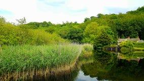 Lopwell-Verdammung Teich Fluss Tavy stockbilder