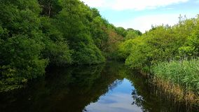 Lopwell-Verdammung Teich Fluss Tavy lizenzfreie stockfotos