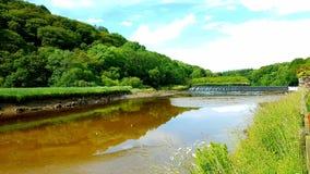 Lopwell-Verdammung Teich Fluss Tavy stockfoto