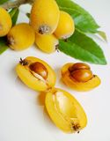 Loquat (Eriobotrya japonica) Royalty Free Stock Images