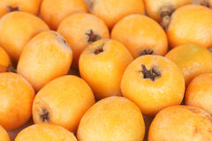 Loquat fruit background Royalty Free Stock Photography