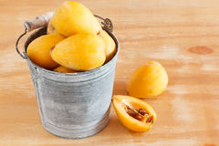 Loquat fruit  in bucket on wooden table Stock Image