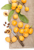 Loquat fruit cut and whole royalty free stock images