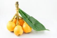 Loquat fruit Stock Photos