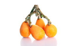 Loquat fruit Royalty Free Stock Photo