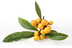 Loquat fruits Royalty Free Stock Photography