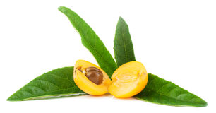 Loquat Medlar fruit. Cut half-and-half  with leaves   on a white background Stock Photography