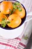 Loquat. Medlar fruit in vintage cup Stock Image