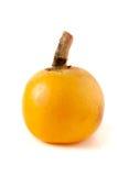Loquat ou japonica maduro do Eriobotrya no fundo branco imagem de stock royalty free