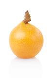 Loquat single fruit stock images