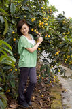 Loquat Tree and Chinese Girl Stock Images