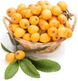 Loquatfruit Royalty-vrije Stock Afbeelding