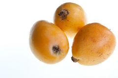 Loquats. A trio of loquats isolated against a white background Royalty Free Stock Image
