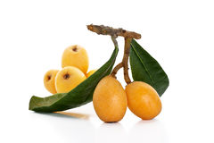 Loquats Royalty Free Stock Photo