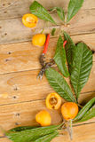 Loquats Stock Images