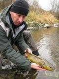 Loquet et version de pêche Images libres de droits