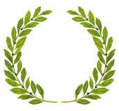 Lorbeer Wreath und Lorbeer vektor abbildung