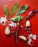 Lorbeerblätter, Pfeffer, Knoblauch, Salz und andere wohlriechende Gewürze auf einem roten Hintergrund Stockfotografie