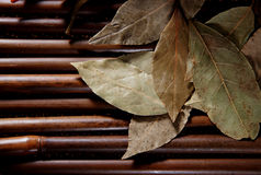 Lorbeerblatt auf Bambus Lizenzfreie Stockfotos