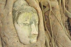 Lord Buddha Statue antico Fotografia Stock