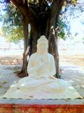Lord Buddha statue royalty free stock images