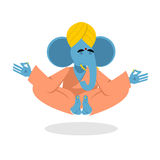 Lord Ganesha. Elephant yoga. Elephant yogi meditates. Blue Eleph Royalty Free Stock Images