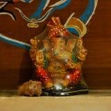 Lord ganesha and my hamster Stock Photos