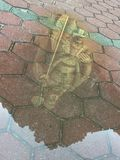 Lord Murugan Statue s'est reflété dans un magma photo stock