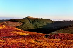 Free Lord`s Seat Above Thornthwaite Forest Royalty Free Stock Photography - 112999387