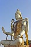 Lord Shiva Nageshwar Stock Image