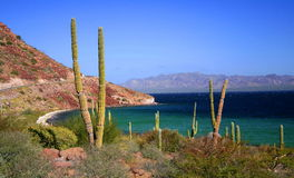 Loreto bays. National marine park loreto bays, baja california sur, mexico Stock Images