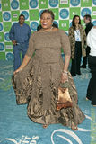 Loretta Devine royaltyfri fotografi