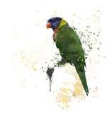 Ουράνιο τόξο Lorikeet Watercolor Στοκ φωτογραφίες με δικαίωμα ελεύθερης χρήσης