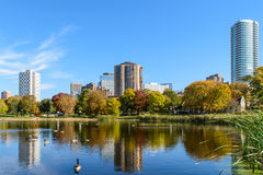 Loring Park In Autumn. This is part of the Minneapolis skyline as seen from Loring Park Royalty Free Stock Image