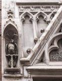 Loro, adornando la abertura de la ventana Fotografía de archivo libre de regalías