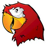 Loro rojo del Macaw Fotos de archivo
