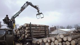 Lorry arm loader unloads wood logs from heavy truck at sawmill facility. Cold cloudy winter day stock video footage