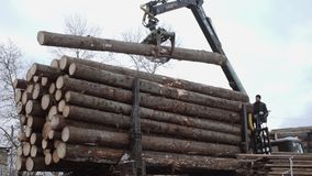 Lorry arm loader unloads wood logs from heavy truck at sawmill production. Cold cloudy winter day stock video