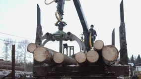 Lorry claw loader unloads wood logs from heavy truck at sawmill factory. Cold cloudy winter day stock video