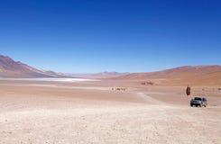 Los佛拉明柯舞曲国家储备,智利 免版税库存照片